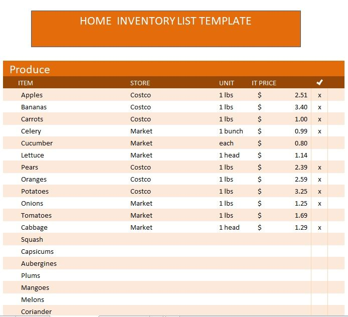 Household Inventory List Template 18