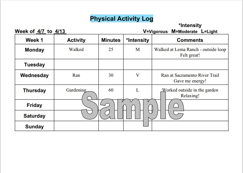 Daily Activity Log Template 16