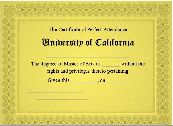 Perfect Attendance Certificate Template 14
